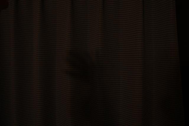カーテンに映った手